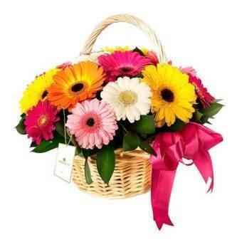 Flores variadas Amorecci